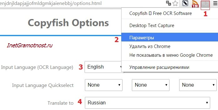 Рис. 2 Настраиваем параметры в Copyfish для перевода: с какого языка переводить и на каком языке нужен перевод