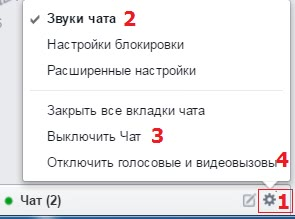 Рис. 2 Настройки чата Facebook