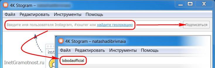 скачать фото и видео с Instagram на компьютер, в 4K Stogram нужно ввести имя нужного пользователя и нажать Подписаться