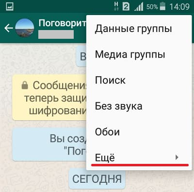 Опция Ещё в группе WhatsApp
